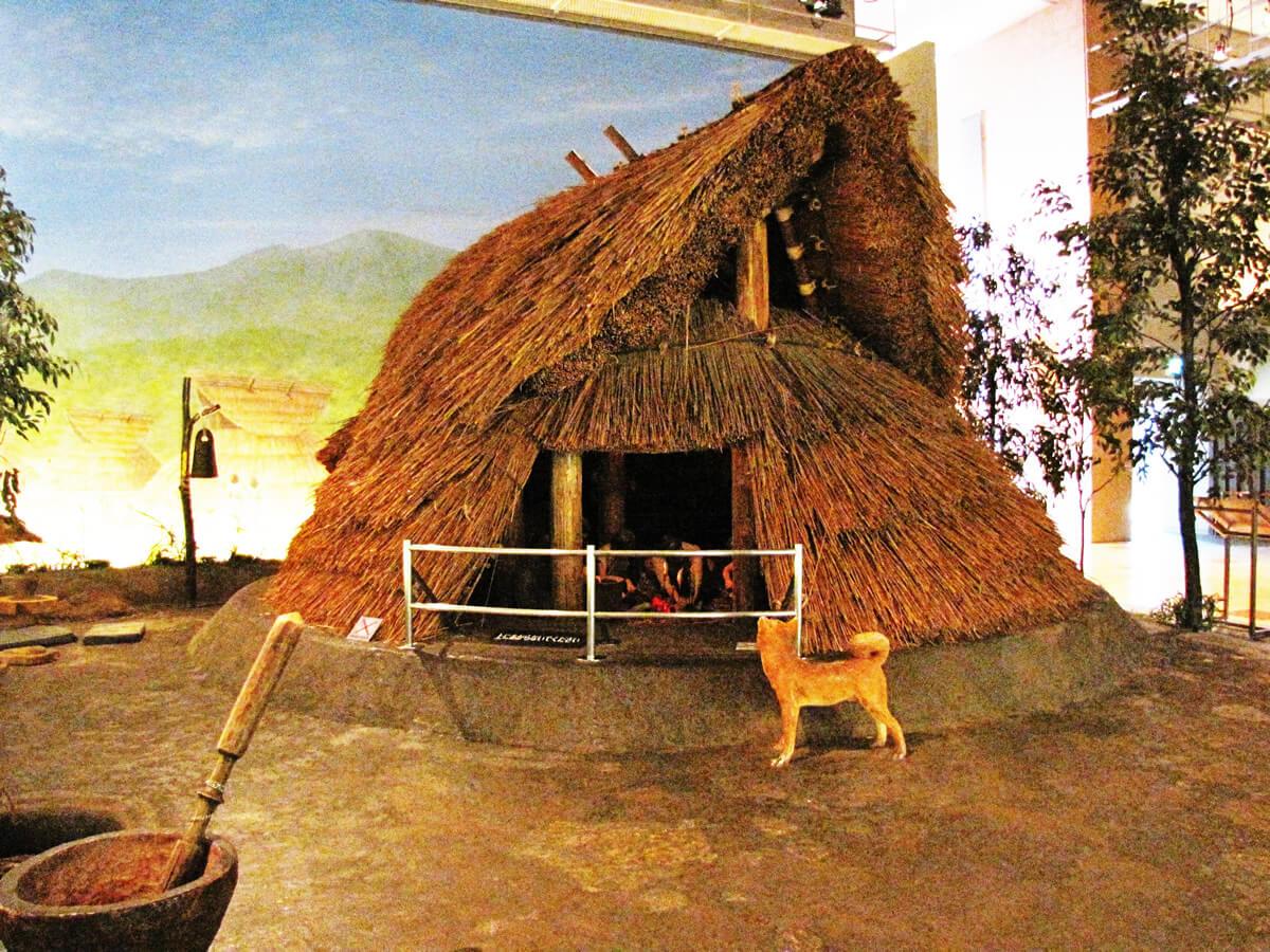 住居 竪穴 式